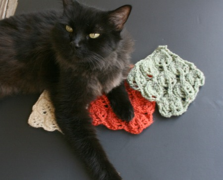 cats on knitting