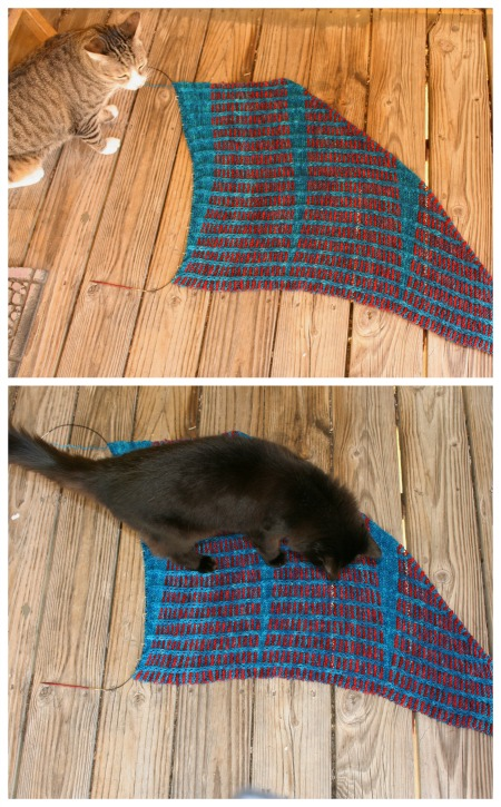Bad kitties on the handknit shawl